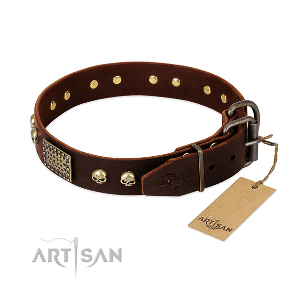 Strong buckle on walking dog collar