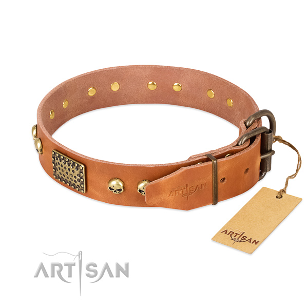 Rust-proof adornments on walking dog collar
