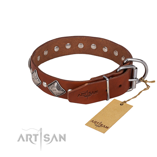 Stylish walking adorned dog collar of top quality full grain natural leather