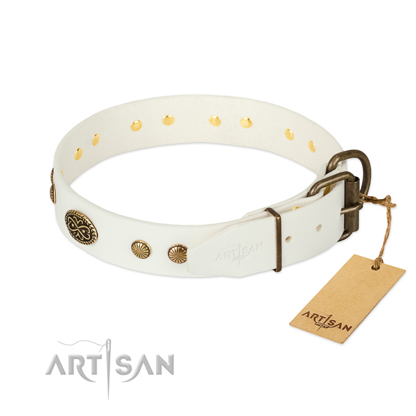 Rust resistant D-ring on leather dog collar for your four-legged friend