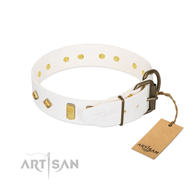 Quality full grain genuine leather dog collar with corrosion proof fittings