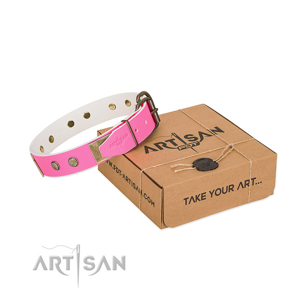 Reliable decorations on dog collar for stylish walking