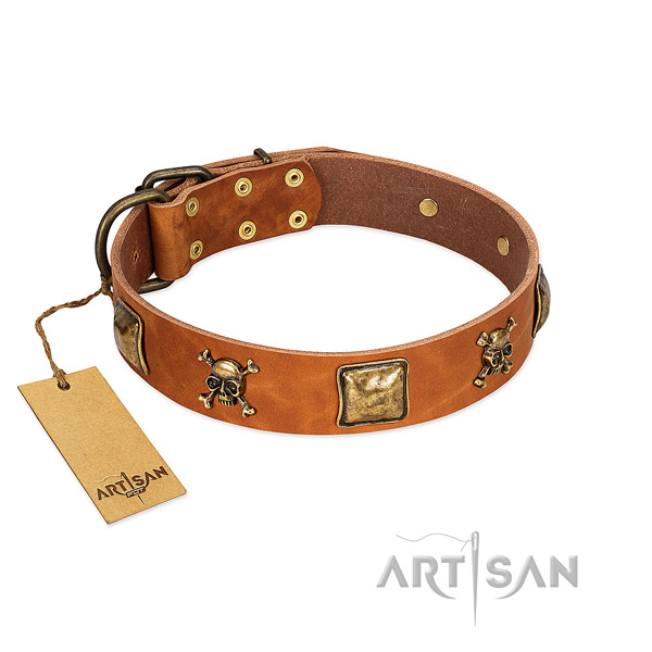 Unique full grain leather dog collar with durable decorations