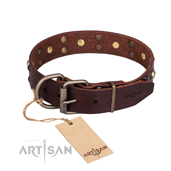 Basic training embellished dog collar of finest quality full grain leather