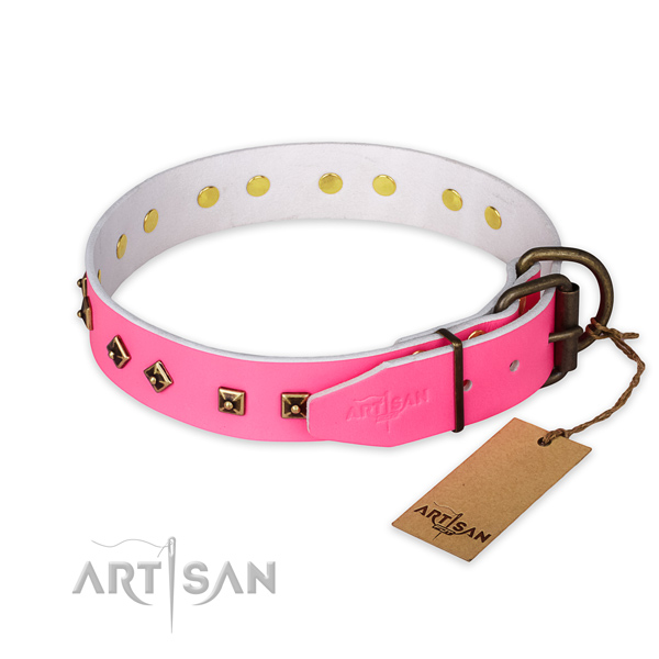 Corrosion resistant hardware on natural leather collar for everyday walking your four-legged friend