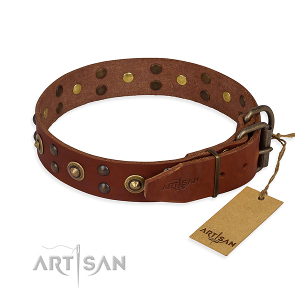 Reliable fittings on leather collar for your impressive pet