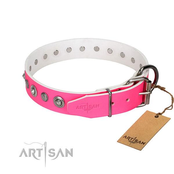 Strong leather dog collar with inimitable embellishments