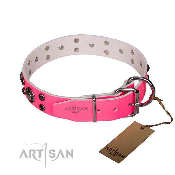 Walking adorned dog collar of durable leather