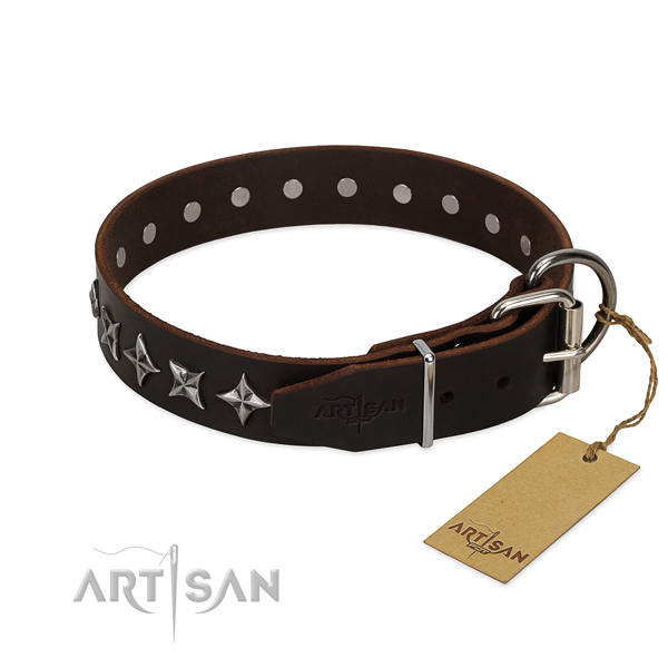 Everyday use studded dog collar of best quality natural leather