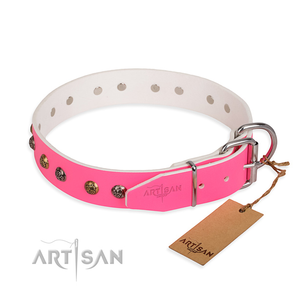Full grain genuine leather dog collar with significant corrosion resistant adornments