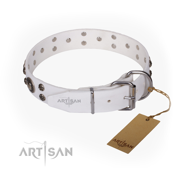 Daily walking decorated dog collar of durable full grain natural leather