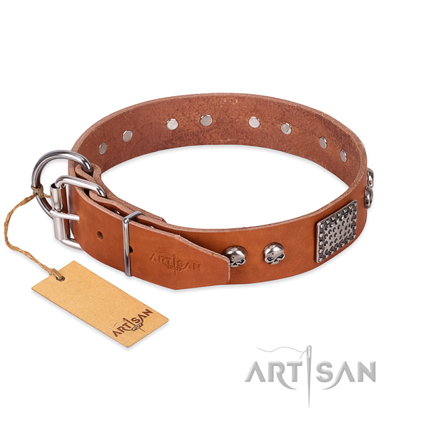 Strong embellishments on walking dog collar