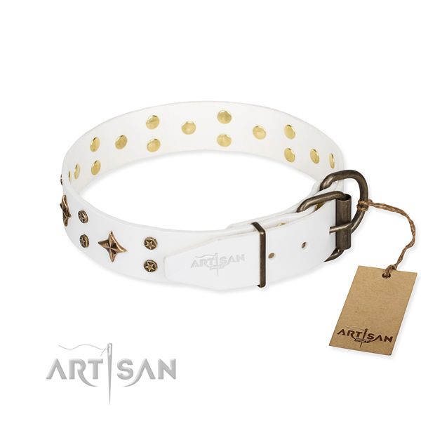 Walking embellished dog collar of top quality full grain natural leather