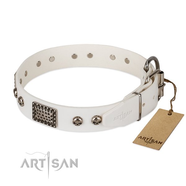 Reliable hardware on everyday walking dog collar