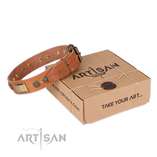 Rust resistant hardware on full grain natural leather dog collar for walking