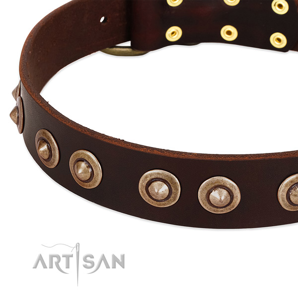 Corrosion proof studs on natural genuine leather dog collar for your canine