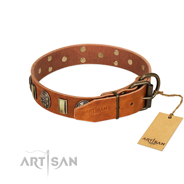 Corrosion proof D-ring on full grain leather collar for stylish walking your dog