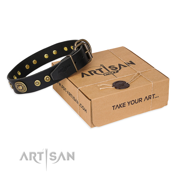 Full grain leather dog collar made of top rate material with corrosion proof traditional buckle