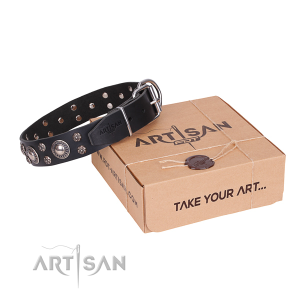 Easy wearing dog collar of finest quality natural leather with adornments