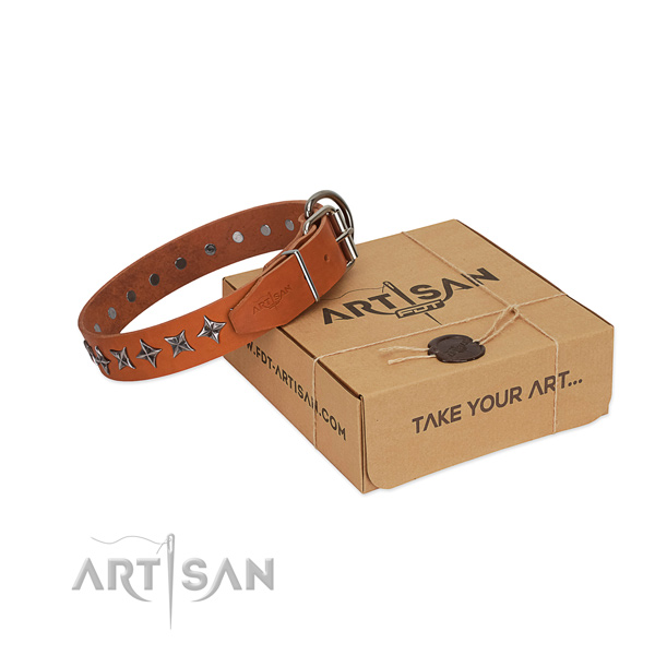 High quality natural leather dog collar with extraordinary studs