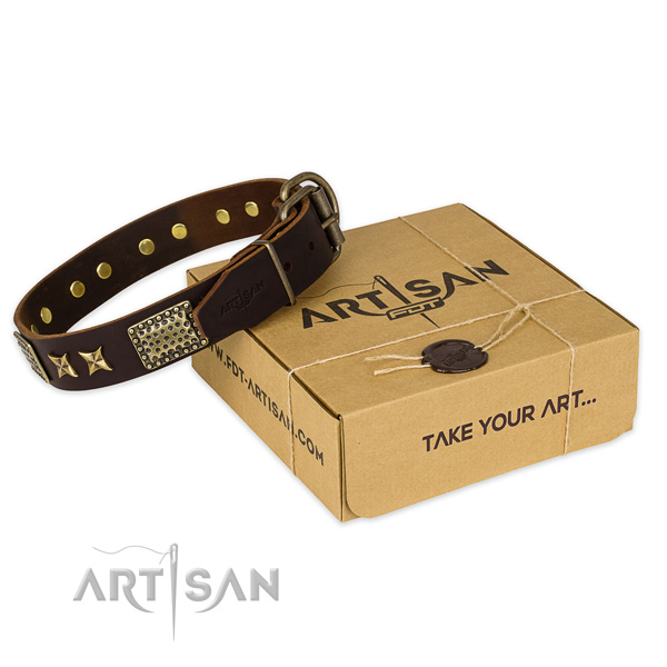 Corrosion proof fittings on leather collar for your impressive dog