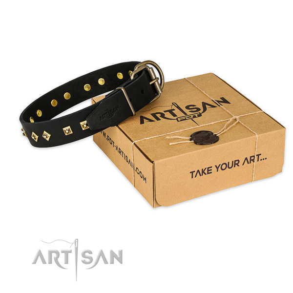 Rust-proof traditional buckle on leather collar for your beautiful pet