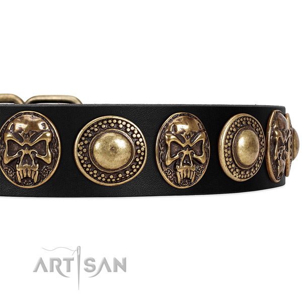 Strong embellishments on leather dog collar for your doggie