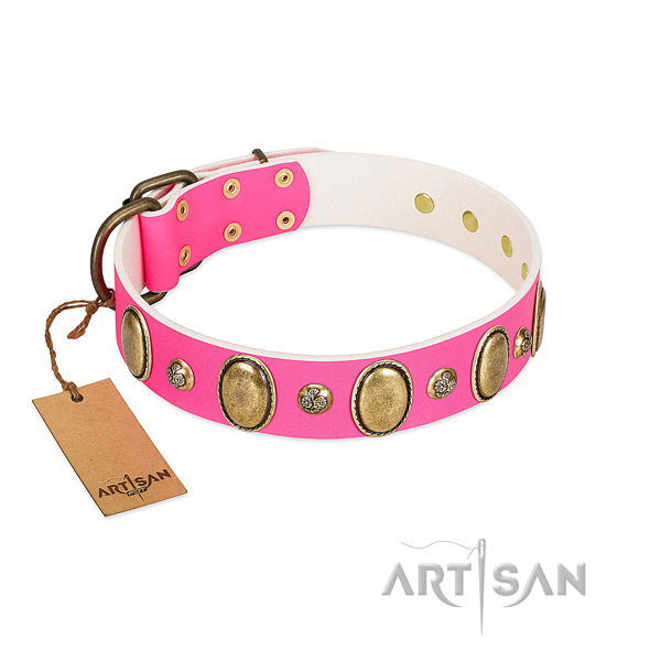 Walking gentle to touch full grain natural leather dog collar with embellishments
