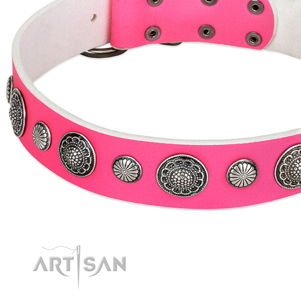Leather collar with corrosion resistant D-ring for your handsome doggie