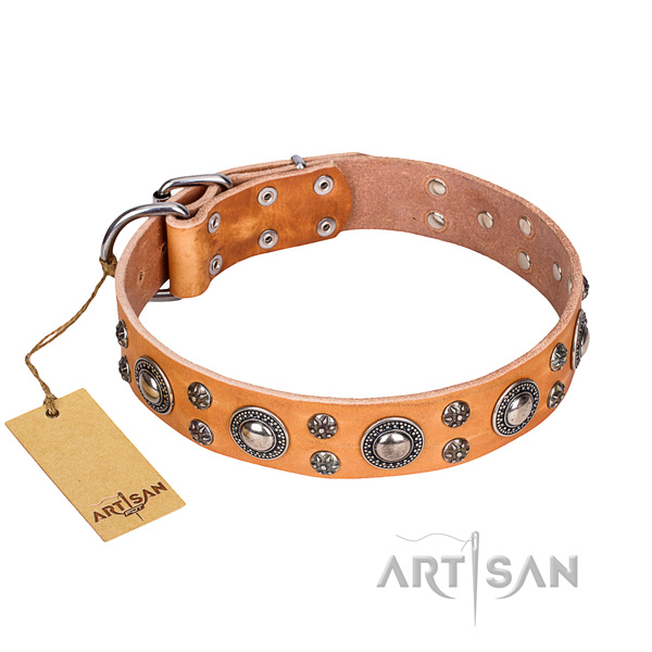 Easy wearing dog collar of best quality full grain leather with adornments