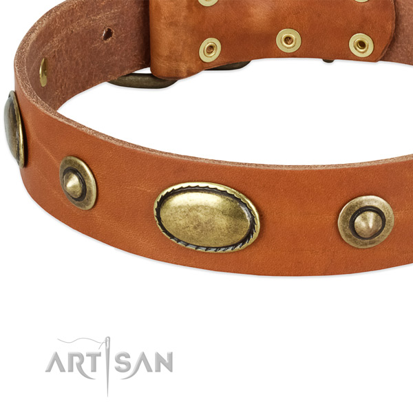 Strong decorations on natural leather dog collar for your dog