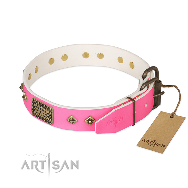 Rust-proof decorations on stylish walking dog collar