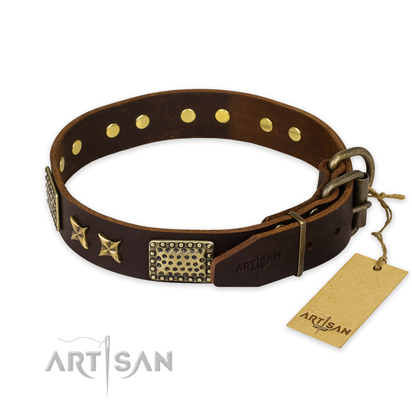 Reliable hardware on leather collar for your handsome dog