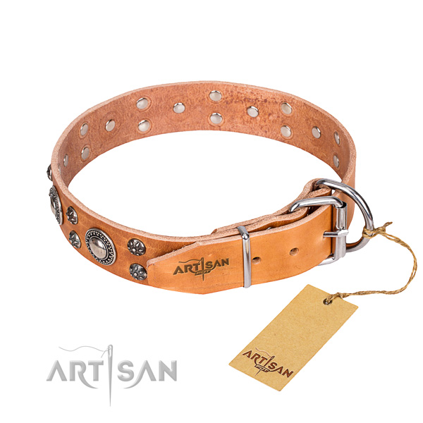 Comfy wearing adorned dog collar of top quality natural leather