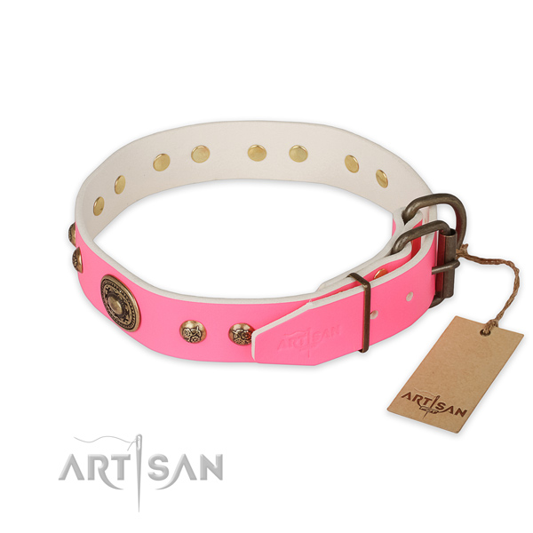 Rust resistant hardware on full grain natural leather collar for walking your canine