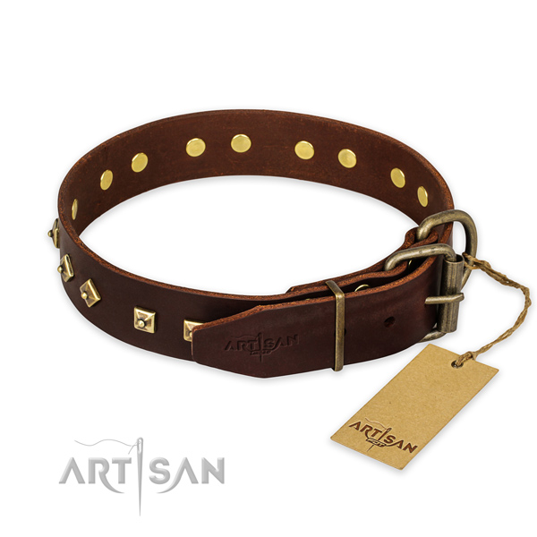 Rust resistant buckle on leather collar for walking your dog
