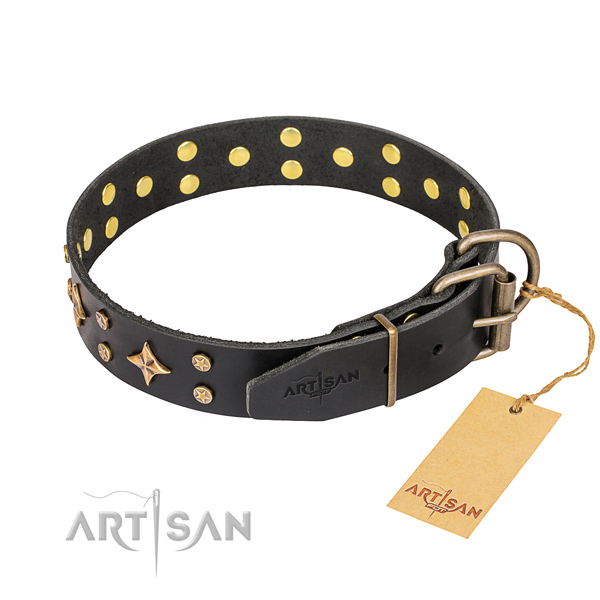 Stylish walking decorated dog collar of top notch genuine leather