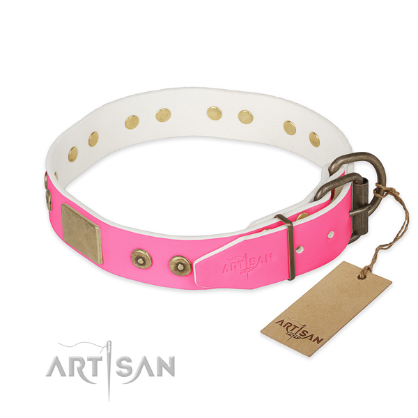 Rust-proof fittings on everyday use dog collar