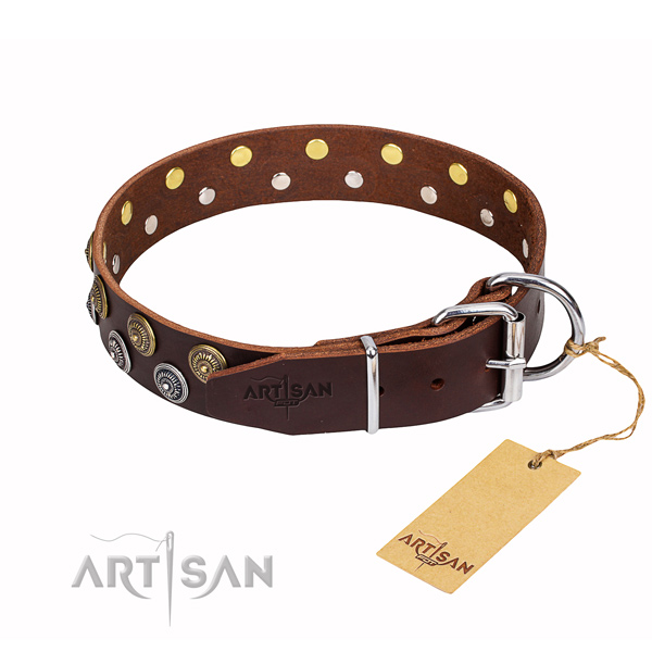 Comfortable wearing studded dog collar of top quality genuine leather
