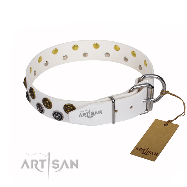 Comfortable wearing studded dog collar of quality full grain genuine leather