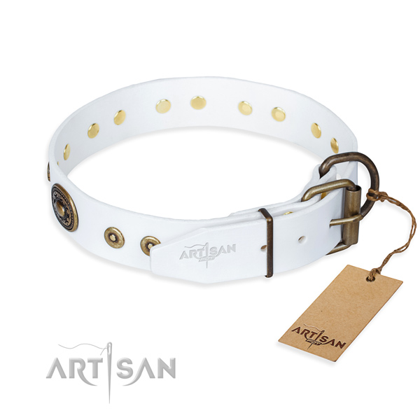 Full grain natural leather dog collar made of quality material with corrosion proof embellishments
