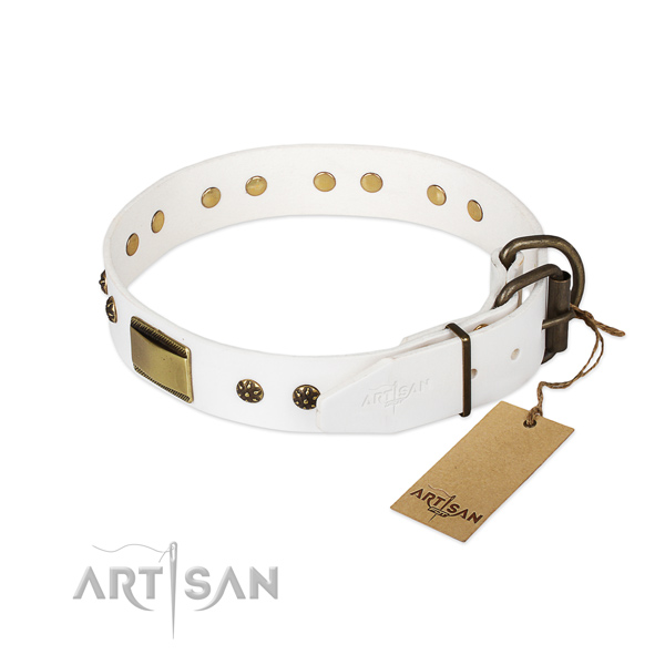 Full grain natural leather dog collar with strong fittings and embellishments