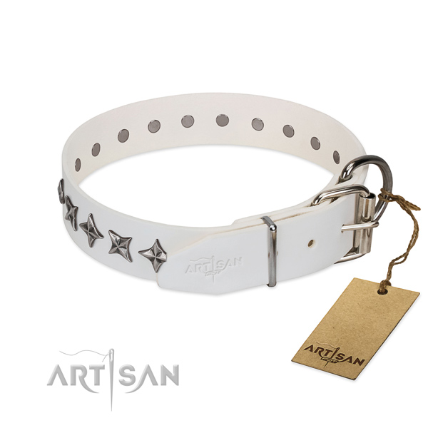 Fine quality leather dog collar with top notch decorations