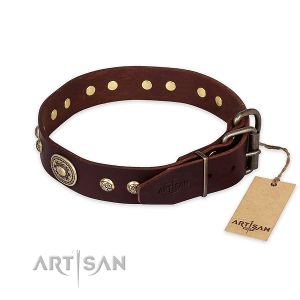Rust resistant traditional buckle on full grain natural leather collar for daily walking your doggie