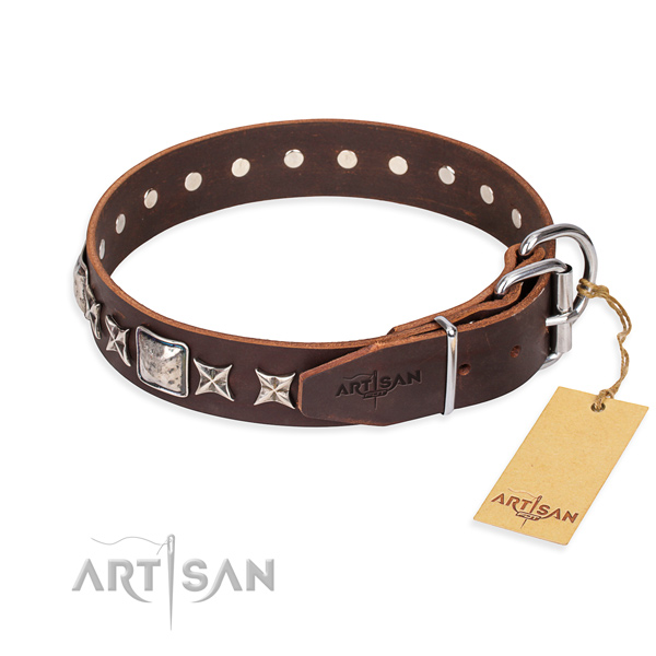 Durable embellished dog collar of leather