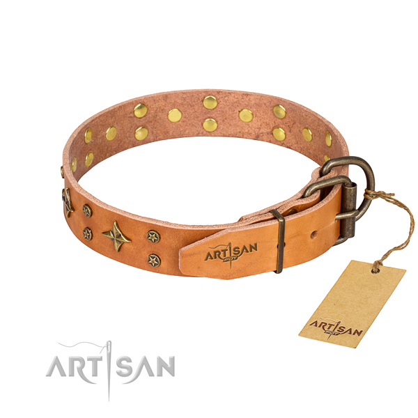 Daily walking adorned dog collar of finest quality full grain natural leather