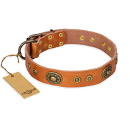 """Dandy Pet"" FDT Artisan Handcrafted Tan Leather Mastiff Collar"