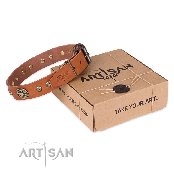 Reliable traditional buckle on natural leather dog collar for daily walking