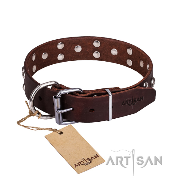Daily walking dog collar of durable genuine leather with decorations