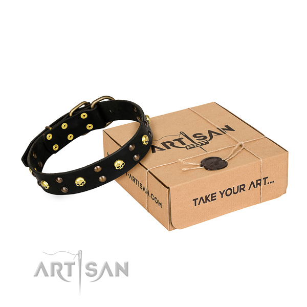 Everyday walking dog collar of best quality full grain natural leather with decorations